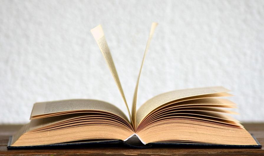 registro-obra-literaria