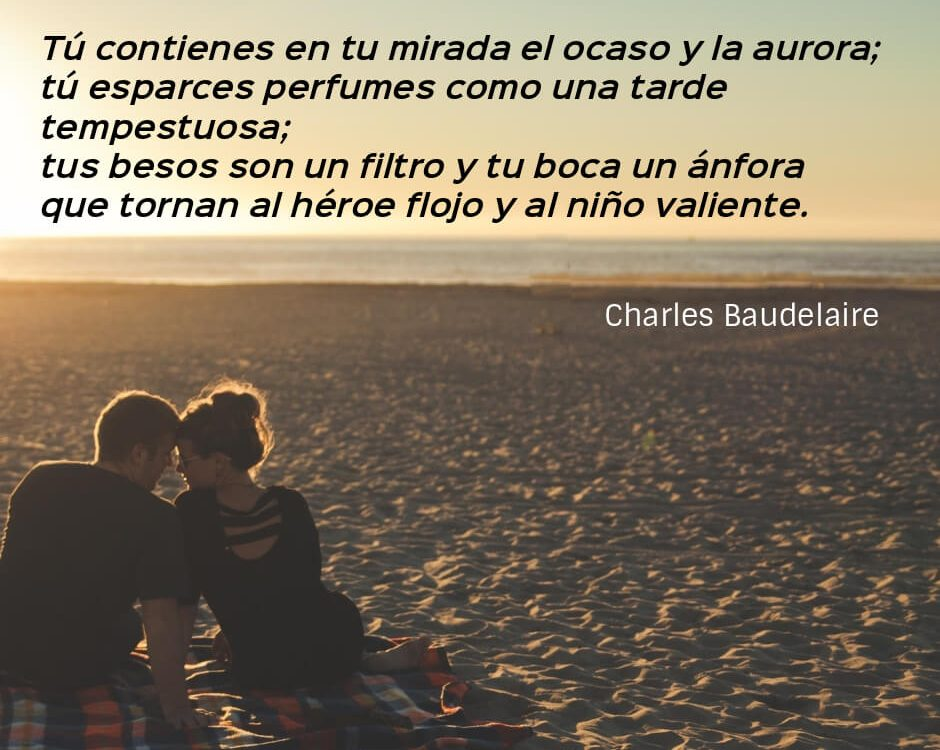 frases baudelaire