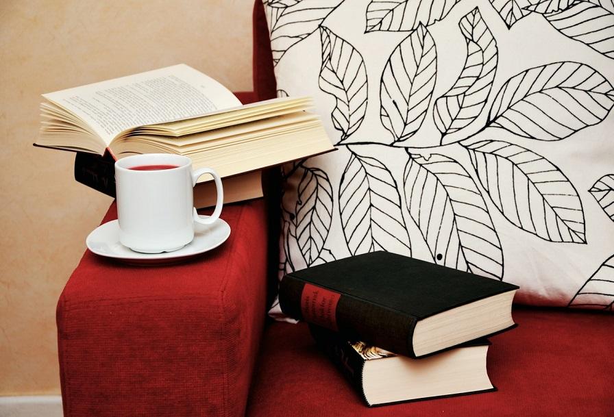 cómo hacer critica literaria