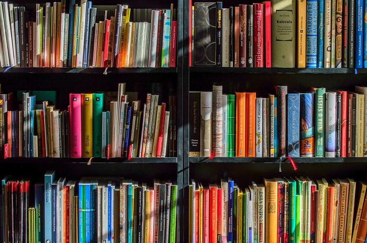 Elizabeth Sagan ,a la artista que crea bodegones con libros,