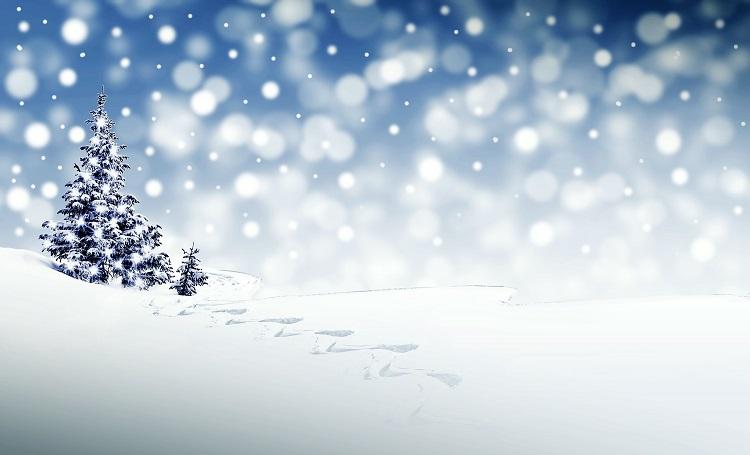 Santa Claus y su aspecto nace del poema 'Una visita de San Nicolás'