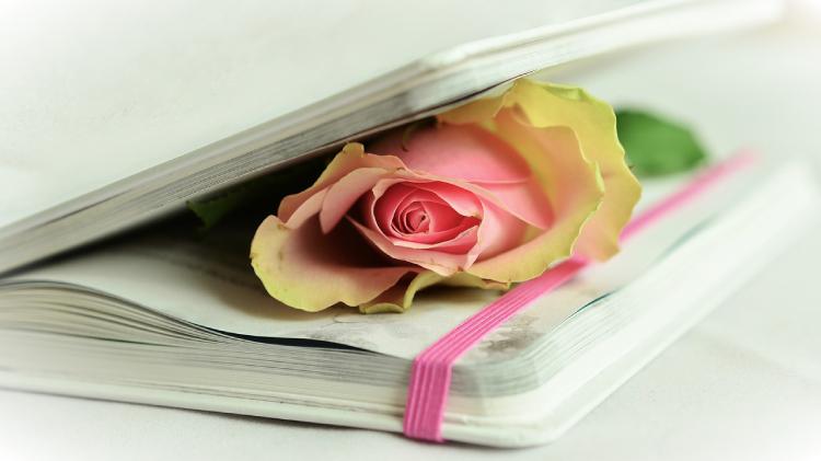 Los mejores conceptos para escribir poesía