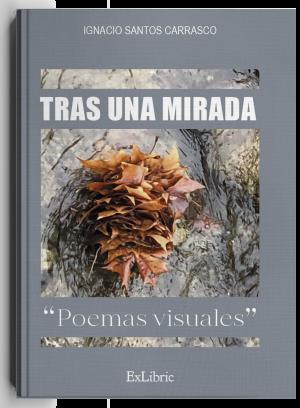 Tras una mirada, libro de poesía